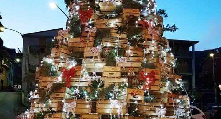 Photo of Sciara: L'Associazione Giovanile Sciarese realizza un Albero di Natale particolare
