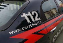 Photo of Palermo: Controlli a Ballarò, tre stalle abusive e un arresto