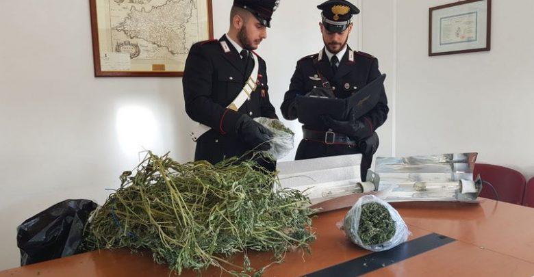 Photo of Misilmeri: Sorpresi in casa con 25 piantine di Cannabis e 300g di marijuana