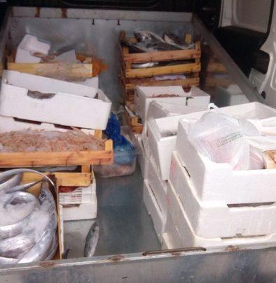 Photo of Palermo, sicurezza alimentare: Sequestrati 150 kg di prodotti ittici