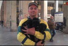 """Photo of Palermo: Nino Spina, """"Il mercante dei cani"""", finisce agli arresti domiciliari"""