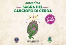 Photo of Il carciofo spinoso di Cerda ospite d'onore al Mercato San Lorenzo