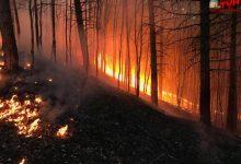 Photo of INCENDIO: La terra brucia sull'Etna