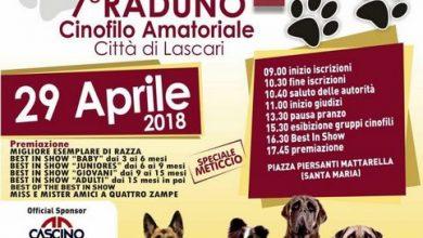 Photo of Lascari: VII° Raduno Cinofilo Amatoriale Città di Lascari