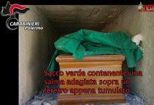 Photo of Bagheria: Operazione Caronte, bare distrutte e cadaveri gettati tra i rifiuti