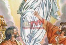 """Photo of In ascolto della """"Parola"""": VIIª Domenica di Pasqua – Ascensione Del Signore"""