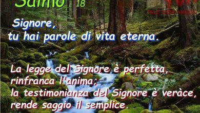 """Photo of In ascolto della """"Parola"""": XIIIª Domenica del Tempo Ordinario"""
