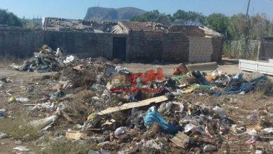 Photo of Bagheria: Il Comune ripulisce un tratto di spiaggia ad Aspra