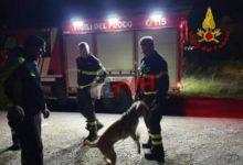 Photo of Termini Imerese: Il cinquantenne disperso ieri salvato da un cane dei Vigili del Fuoco