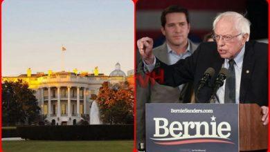 Photo of Usa 2020: Bernie Sanders vince le Primarie Democratiche in New Hampshire
