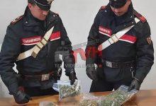 Photo of Campofelice di Roccella: Droga in casa agli arresti un uomo