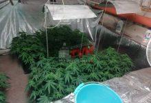 """Photo of Palermo: Marijuana in un cunicolo, scoperta una serra per la coltivazione """"indoor"""""""