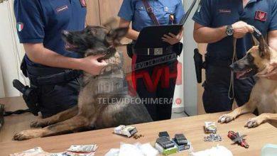 Photo of Palermo: Agli arresti un 29enne che spacciava anche dagli arresti domiciliari